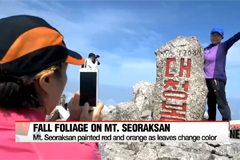 Season's first fall foliage paints Mt. Seoraksan red, orange and yellow