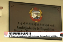 N. Korean embassies go all out to scramble for cash: NYT