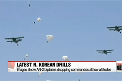 Decades-old AN-2 described by U.S. media as N. Korea's most dangerous weapons