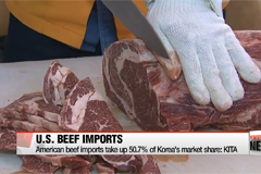 U.S. beef takes up 50% of imported market share: KITA
