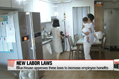 Blue House cabinet decides on new laws that improve labor welfare