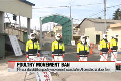 South Korea orders 24-hour ban on poultry movement after bird flu detected at duck farm