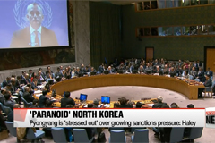 North Korea has become 'paranoid' due to growing sanctions pressure: Haley