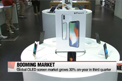 Global market for OLED screens rise 30 percent in 3rd quarter