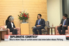 South Korea to inform Japan of 'comfort women' deal review before release as 'diplomatic courtesy'