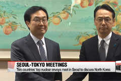 South Korea-Japan meetings to take place in Seoul on North Korea and 'Comfort Women' issue