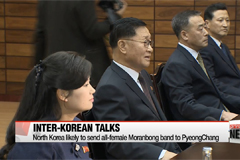Two Koreas hold working-level talks over North's participation at PyeongChang Winter Olympics