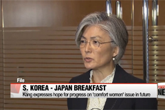 South Korea's FM Kang holds sideline meetings with U.S., Japan and UK