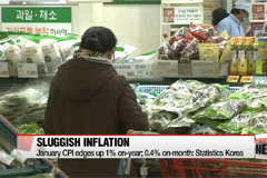 Korea consumer inflation slows in January as food prices dip