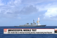 U.S. missile fails to intercept incoming dummy missile during test: Reports