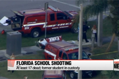 At least 17 dead in Florida school shooting; suspect in custody