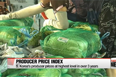 S. Korea's January producer prices highest in over 3 years