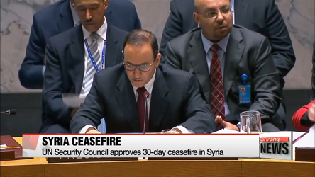 UN Security Council approves 30-day ceasefire in Syria