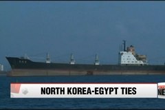 UN report to shed light on Egypt's role in N. Korean weapons sale: NYT