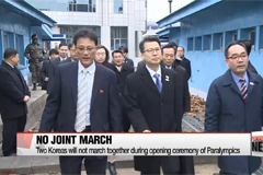 Two Koreas not to hold joint march during Winter Paralympic Games over Unified Korean flag showing Dokdo