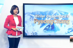 Six South Korean skiers competing in Wednesday's cross-country skiing event
