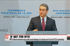 WTO Director-General says world would already be in trade war if not for WTO's leadership
