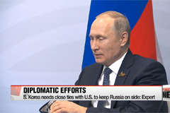 Putin's re-election unlikely to affect policy on N. Korea: Expert