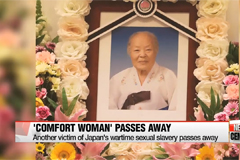 Another 'comfort woman' victim passes away,... leaving only 29 left