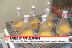 Local researchers come up with new artery-cleansing medication made by tangerines