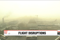 Foggy conditions disrupt airport operations at Incheon, Gimpo