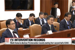 South Korea to disclose FX intervention records starting from second half of 2018
