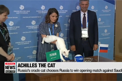 Russia's psychic cat Achilles picks home team...as Russia gears up for World Cup