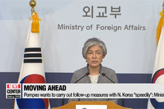 South Korea hopes to achieve declaration of the end of Korean War by the end of this year: Seoul's FM