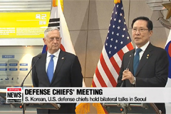 Defense chiefs of S. Korea and U.S. hold bilateral talks in Seoul
