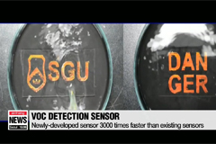 Korean researchers develop sensor to quickly detect carcinogens