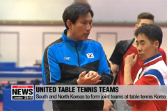 Two Koreas to form joint teams at Int'l Table Tennis Federation World Tour Platinum Korea Open