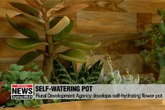 Korean researchers develop self-watering flower pot