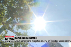 Could South Korea be facing hottest summer on record?