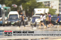 Nine people have died this summer in Korea as result of heat wave