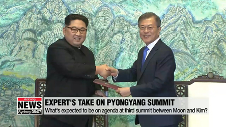 Expert's take on Pyongyang summit announcement
