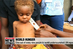 One out of every nine people in world undernourished: UN report