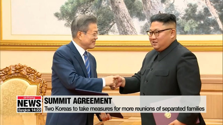 Pyeongyang summit agreement to further humanitarian cooperation and cross-border exchange