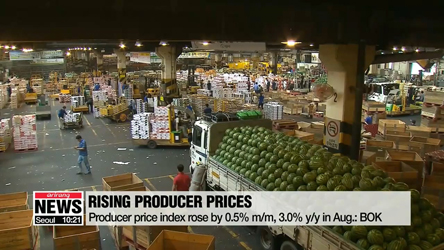 S. Korea's producer prices hit highest level in four years in August
