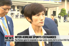 Two Koreas agree to actively promote further ties in sports