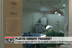 Foreigners spent US$ 210 mil. on plastic surgeries in South Korea last year