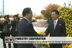 Seoul, Pyeongyang holding forestry talks at joint liaison office