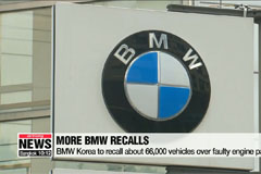 BMW to recall additional 66,000 vehicles: Transport ministry
