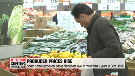 South Korea's producer prices hit highest level in more than 5 years in Sept.: BOK