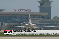 Two Koreas to discuss cooperation in aviation on Friday; almost 100 business people to visit N. Korea tomorrow