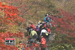 S. Koreans visiting N. Korea for anniversary of civilian tours to Mt. Geumgang