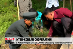 Seoul to spend US$ 1.2 mil. on forestry cooperation with N. Korea