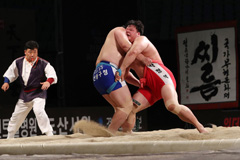 Korean wrestling jointly listed as South and N. Korea's UNESCO intangible cultural asset