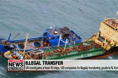 UN investigates at least 40 ships, 130 companies for illegally transferring goods to N. Korea: WSJ