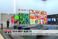 LG Electronics' 65-inch OLED TV named best of 2018: Consumer Reports