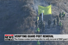 Two Koreas conduct joint inspection to verify removal of DMZ guard posts
